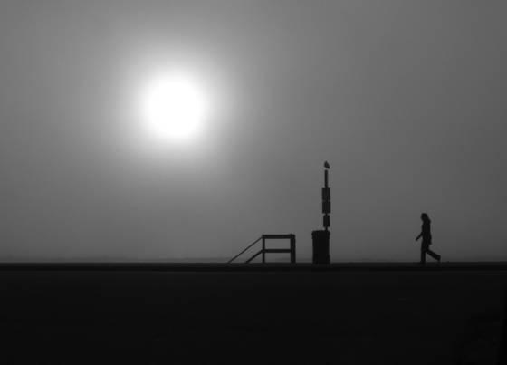 Morning_walk