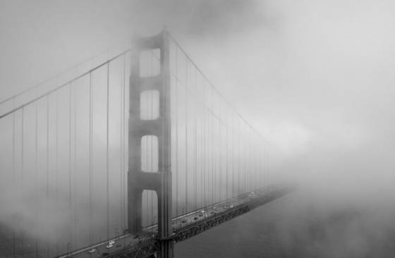 In_to_the_fog