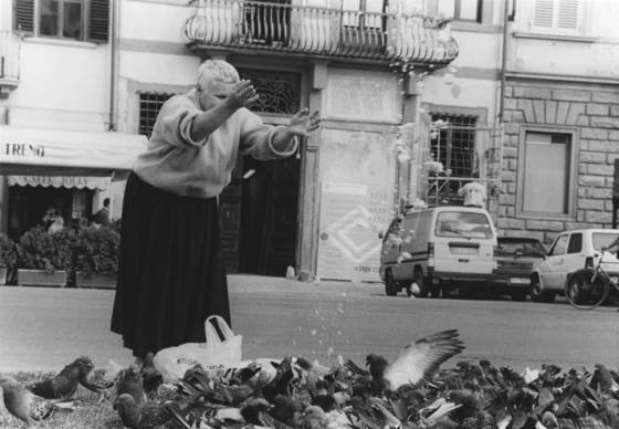 Angelica feeding the birds