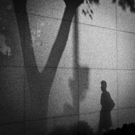Shadow_2