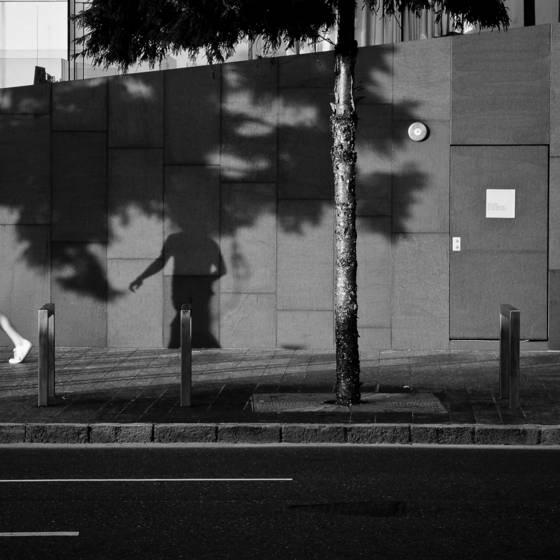Shadow_5