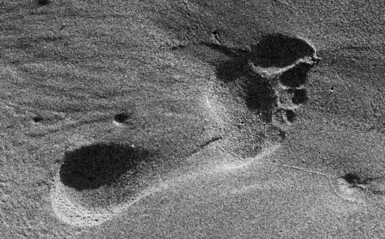 Oregon-footprint