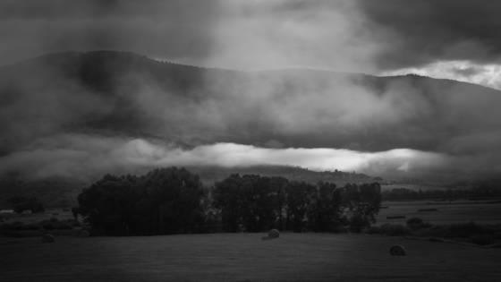 Fog_afire