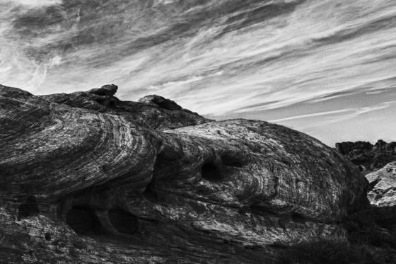 Organic_sandstone
