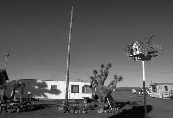 Desert_shelter