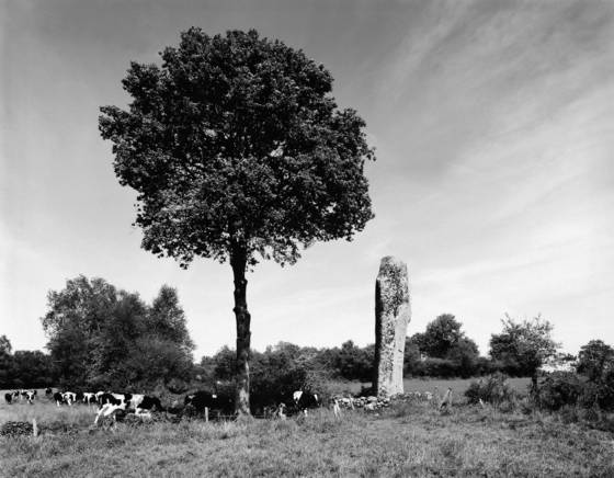 Menhir at kerjean