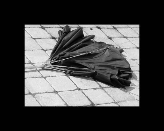 Umbrella________________________________________________________staten_island