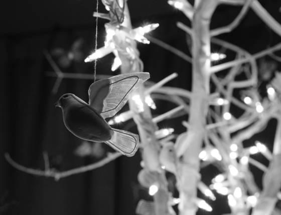 Bird_on_a_string