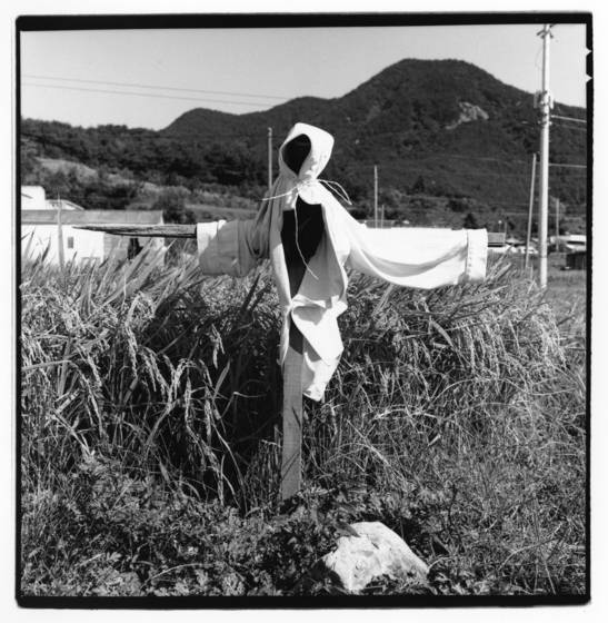 Scarecrow__south_korea_2003
