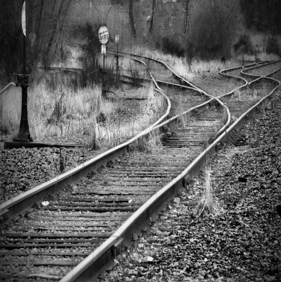 Old_tracks__6_woodenville