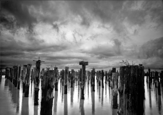 Pilings everett