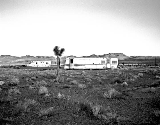 Desert_living