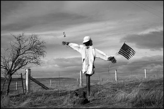 American_scarecrow