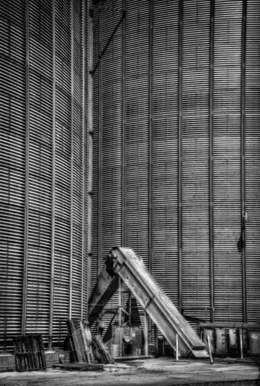 Grain__1