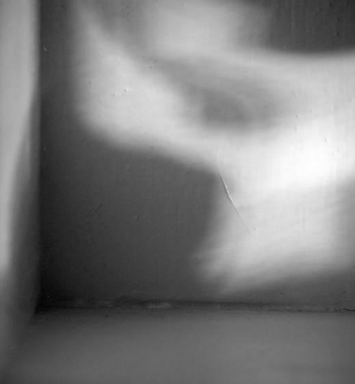Empty_bookshelf_corner