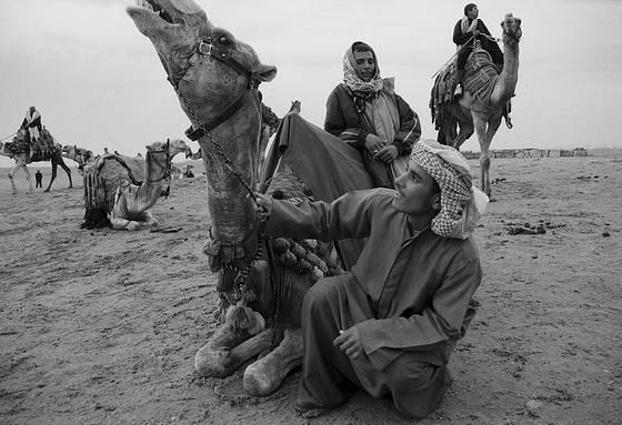 Beduin_camp