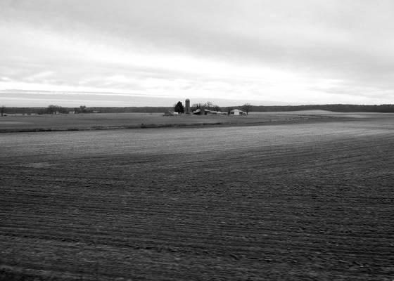 Farm_1