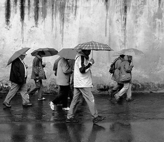 Umbrellas__1