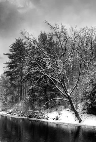 Cedar_creek