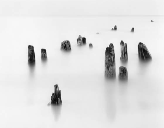 Dock_pilings
