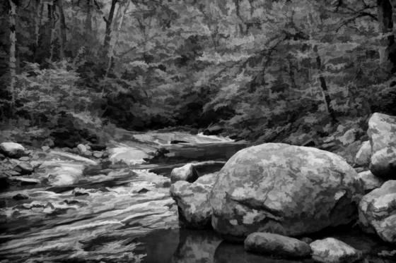 Davidson_river