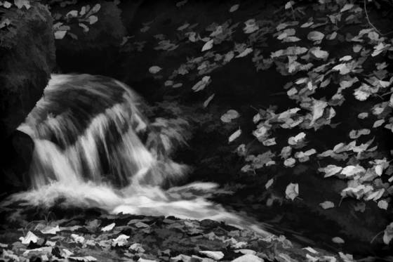 Flow and leaves