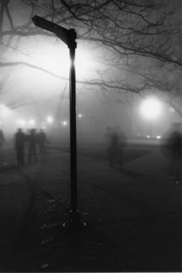 Foggy_evening_3