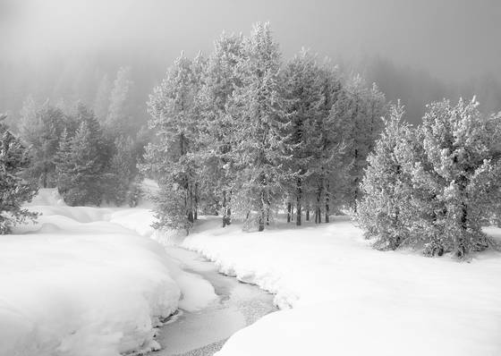 Snow_and_fog