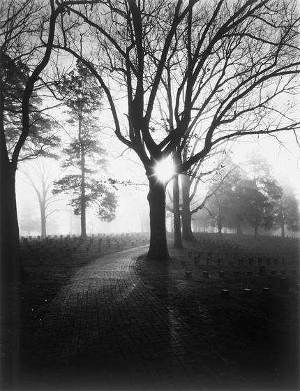 Mourning_fog