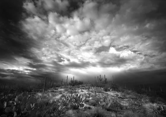 Storm_over_saguaro_hill