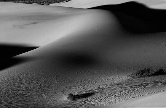 Desert_curves