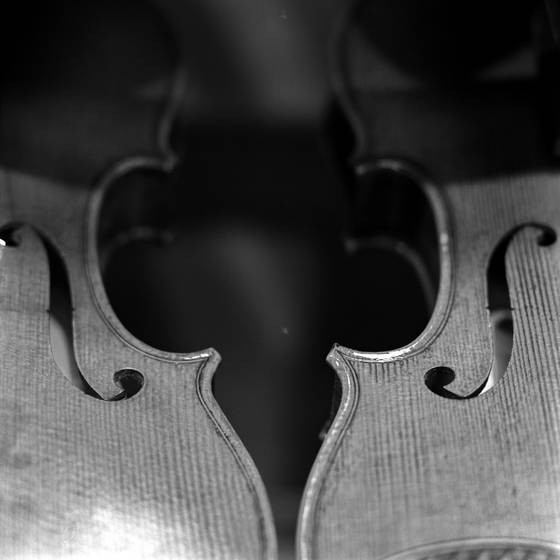 Twin_violins
