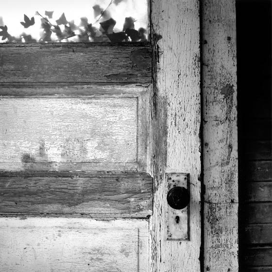 Ivy_door