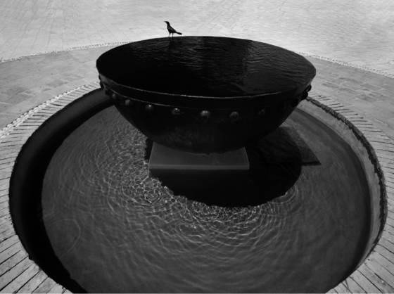 The_bird_and_the_fountain