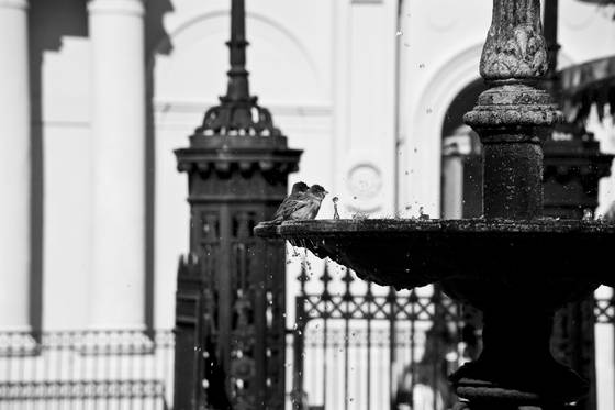 Jackson square fountain