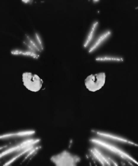 Mad_cat