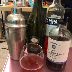 BBC: blueberry basil campari