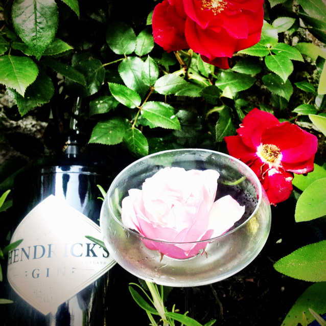 Hendricks Gin Martini