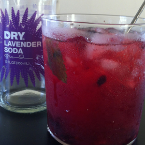 Blackberry gin Rickey