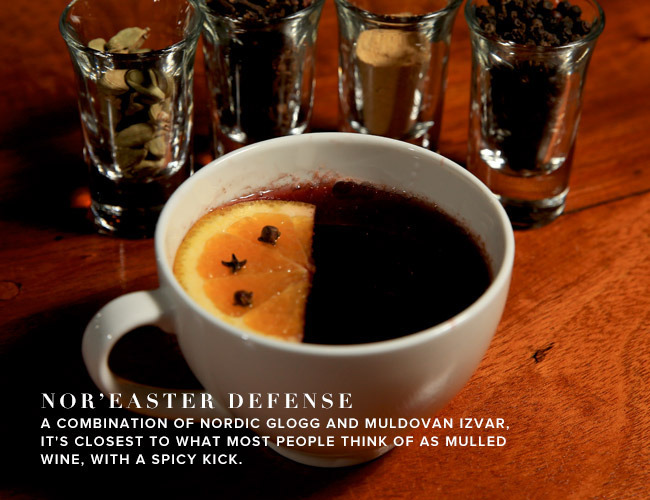 Nor'easter Defense Mulled Wine
