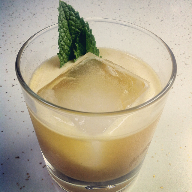 Fernet-Ginger Smash