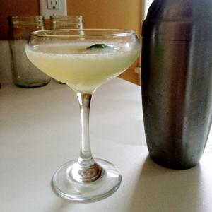 Tequila Honeysuckle