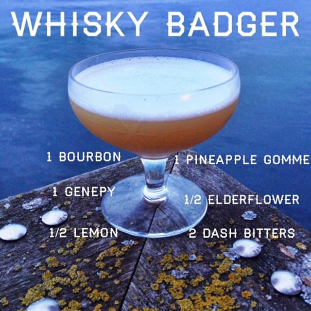 Whisky Badger