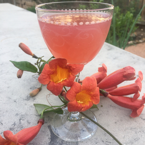 Pink Elephant (Variant)