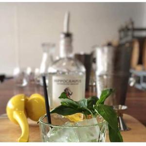 Gin Basil Smash - Hippocampus