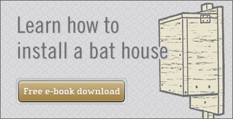 Learn how to install bat house e-book