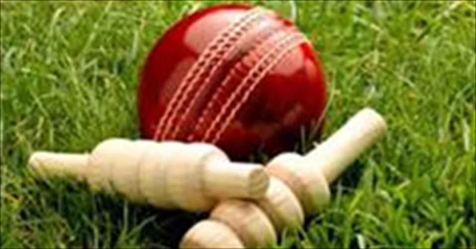 DSS secure a first innings win over Thurstan