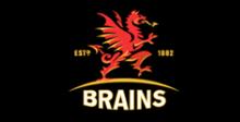 Brains%20link