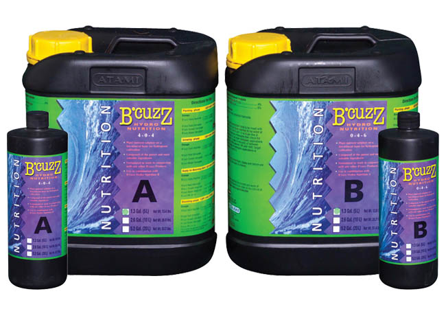 BCuzz Hydro A 1.32 Gallon
