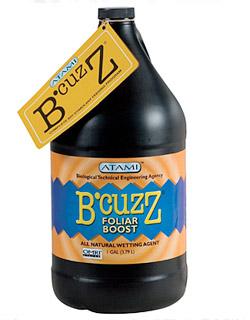 BZFLB1